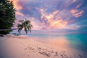 Tropical Beach Sunset Wallpaper and Background Image ...