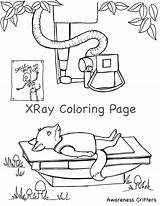 Coloring Pages Xray Procedure Medical Comments sketch template