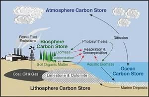 Scientific Explorer  Earth U0026 39 S Atmosphere Part 8
