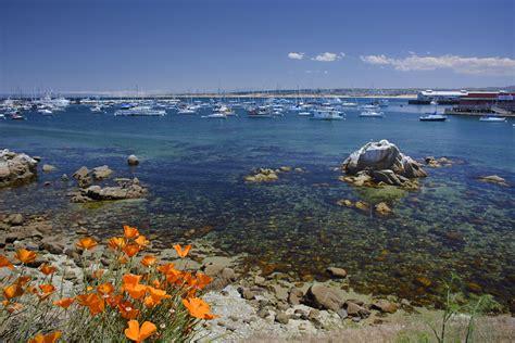 Paddle Boats Monterey Ca by Monterey Ca Michaelbbishop
