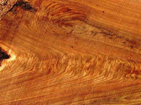 cost wood diy homebuilders