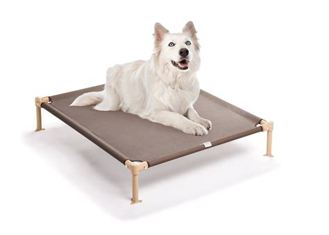 27419 coolaroo elevated pet bed outdoor elevated bed with canopy korrectkritterscom