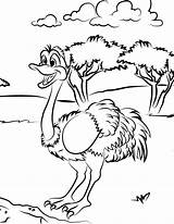 Ostrich Coloring Meadow Pages Flower Template sketch template