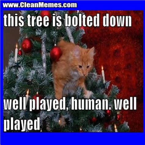 Christmas Cat Memes - written by cleanmemes no comments posted in cat memes christmas memes clean funny images