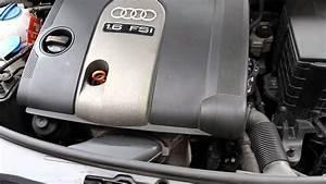 Audi A3 1 6 Fsi Steuerkette - Rasseln Beim Kaltstart  Timing Chain Rattle