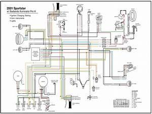 Wiring Diagram 97 Sportster Turn Signal Relay