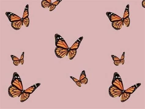 aesthetic butterfly wallpapers cool backgrounds