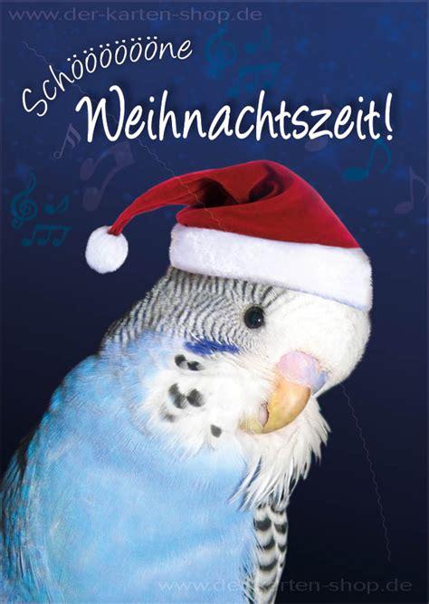 postkarte weihnachtskarte wellensittich schoene