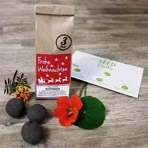 Blumen Zu Weihnachten : wohnen weihnachts edition 3er packung 39 bl tenmeer seedbombs geschenkidee zu weihnachten ~ Eleganceandgraceweddings.com Haus und Dekorationen