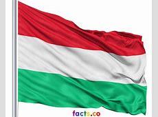 Flag Hungary printable flags