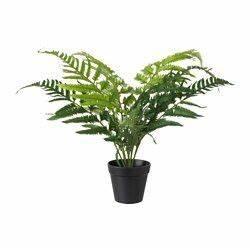 Pot Fleur Ikea : plantes cache pot pot de fleur ikea bathroom pinterest ikea pots de fleurs et pots ~ Teatrodelosmanantiales.com Idées de Décoration