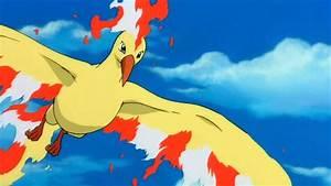 rarest pokemon go pokemon
