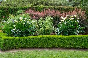 Wann Balkon Bepflanzen : calla pflanzen ein pflanzratgeber ~ Frokenaadalensverden.com Haus und Dekorationen
