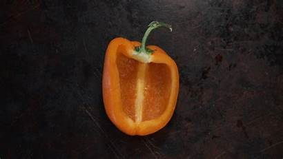 Gifs Bell Christmas Peppers Creative Grilled Recipes