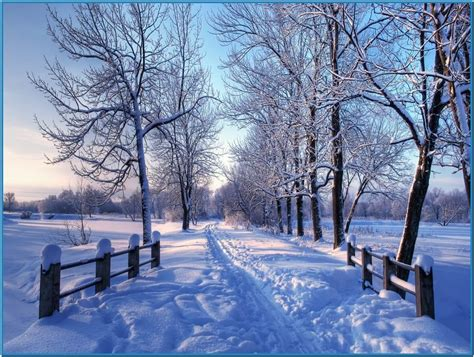 3d Winter Animated Wallpaper - winter screen backgrounds wallpapersafari