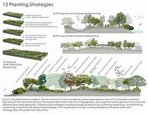 Strategy Phase Landscape Diagram  Presentation U2022