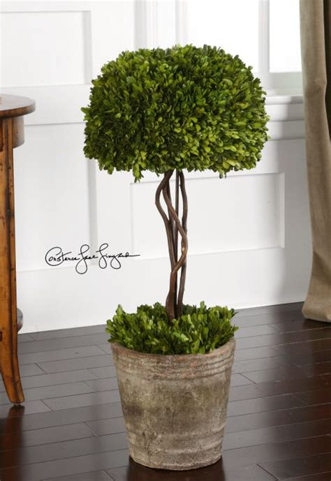 17 Best Images About Topiary Trees For Front Door On