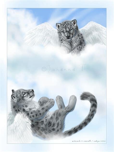 anime animal images animal anime hd wallpaper