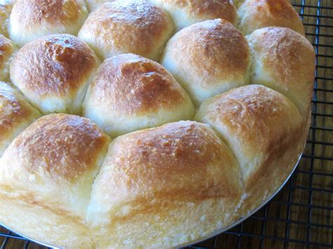 yeast rolls no knead yeast rolls my favourite pastime