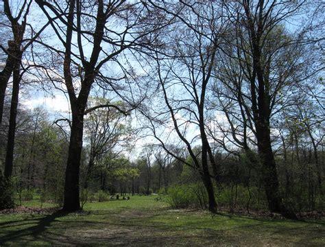 Englischer Garten Nördlicher Teil by File Englischer Garten Nordteil Muenchen 1 Jpg Wikimedia
