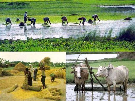 bangladesh images  loving bangladesh hd wallpaper