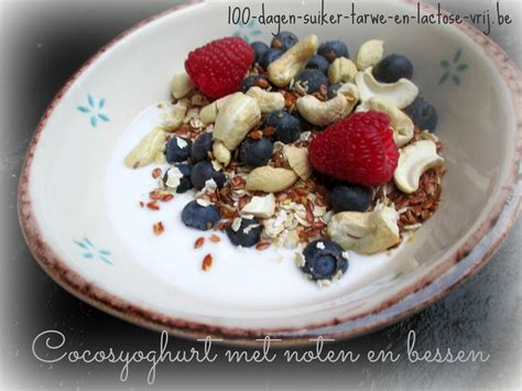 Yoghurt zonder koemelk