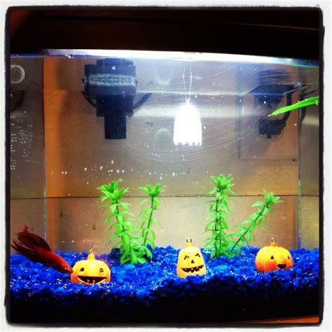 petsmart aquarium decorations fish tank decorations fish tank