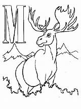 Moose Coloring Printable Alphabet Letters Animal Sheets Drawing Letter Bestcoloringpagesforkids Animals Elk Printables Getdrawings Antler Antlers Library Clipart Realistic sketch template