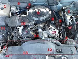 What U0026 39 S Under The Hood Of Your Car