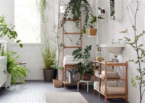plante cuisine decoration des plantes vertes pour une salle de bains tendance