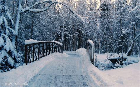 Winter Wallpaper Laptop by Winter Wallpapers Hd Best Winter Wallpaper Hd 7870