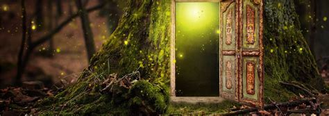 whats   magic door drive cares