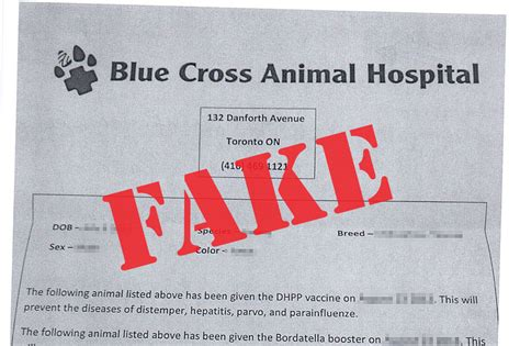 dont buy  puppy   park blue cross animal