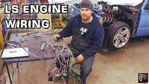 Hotrod Standalone Fuel Injection Ecm Wiring   Rob Blows A