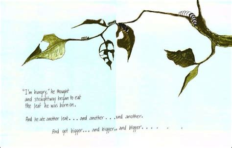 Hope For The Flowers Book Quotes