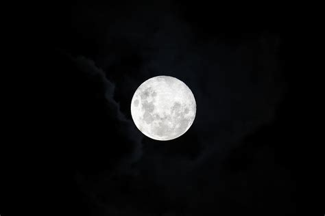pink moon      aprils full
