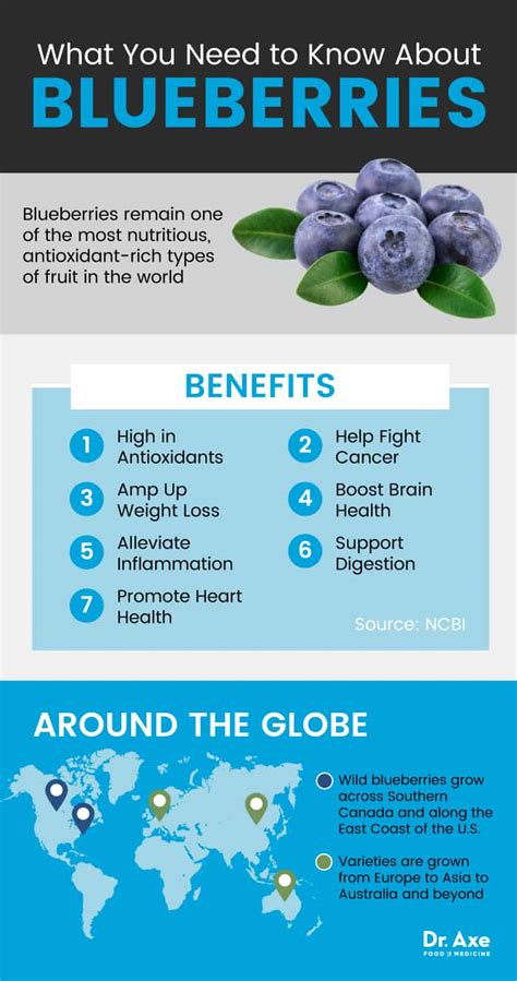 top  health benefits  blueberries blueberry nutrition
