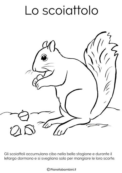 disegni per bambini da colorare di animali disegni di animali che vanno in letargo da colorare
