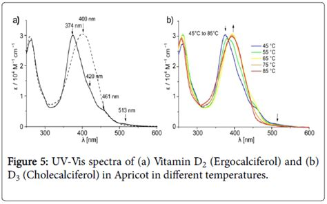 uv b l for vitamin d uk measurement the amount of vitamin d2 ergocalciferol