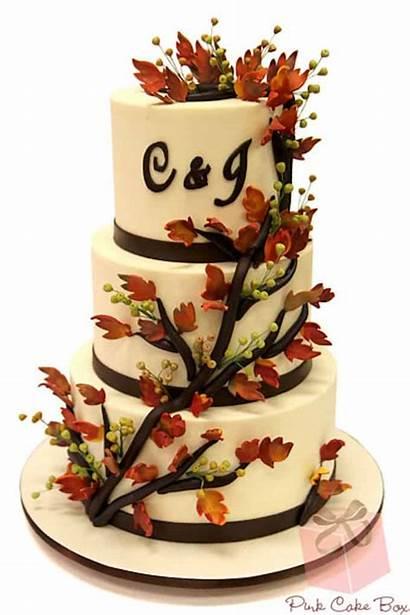 Fall Cakes Cake Autumn Amazing Rustic Cupcakes