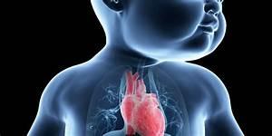 Гипертония и нервы лечение