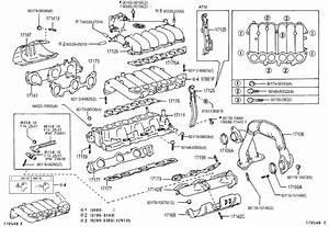 2002 Toyota Tacoma Manifold  Intake  Spec  California  Lev