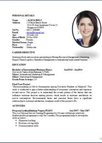 standard resume format pdf standard curriculum vitae