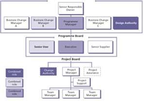 Project Management Team Structure