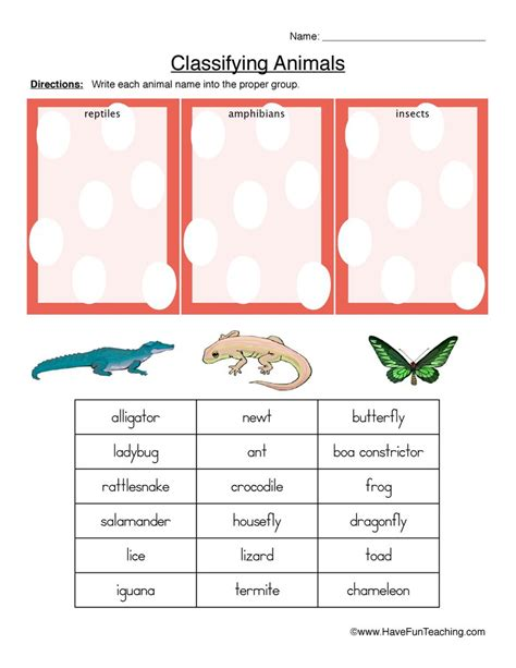 classifying animals worksheet reptiles hibians or