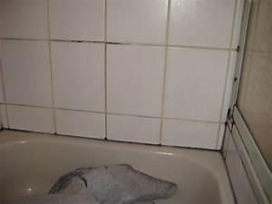 Fliesenfugen Erneuern Dusche : fugen reinigen bad fugen im bad reinigen schlafzimmer ~ Michelbontemps.com Haus und Dekorationen
