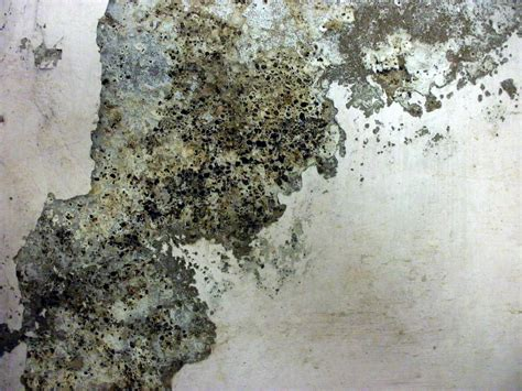 grunge texture granite chipped paint wall dirt