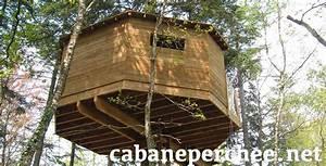 Constructeur Cabane Dans Les Arbres : constructeur cabane dans les arbres construction de cabanes perch es ~ Dallasstarsshop.com Idées de Décoration