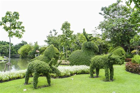 Topiary : Argyle Park Topiary Garden (public Demonstration)
