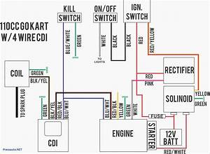 Wilderness Trail 250 Atv Wiring Diagram